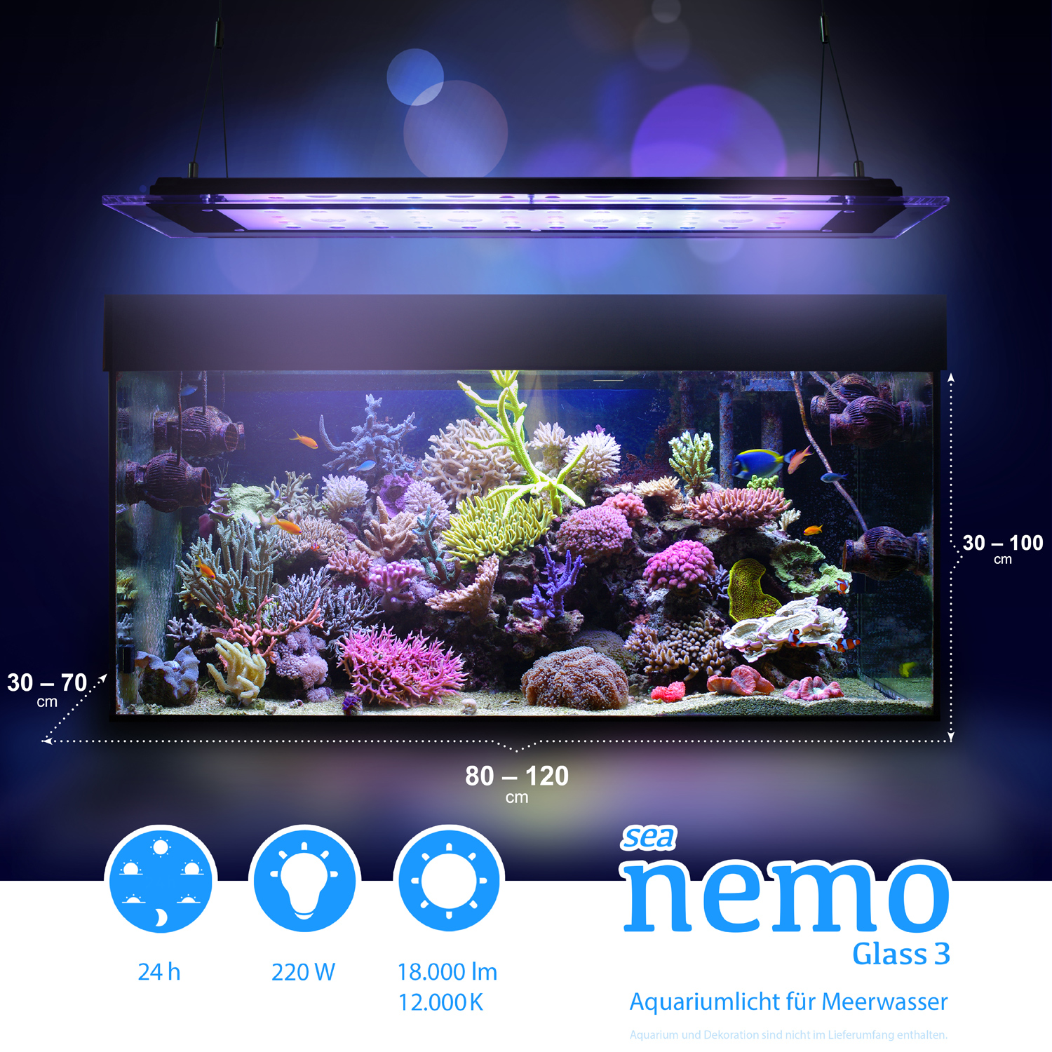 sea nemo glass 3 led korallen meerwasser aquarium. Black Bedroom Furniture Sets. Home Design Ideas